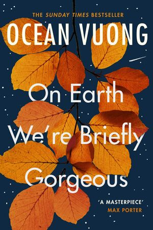 ON EARTH WE'ARE BRIEFLY GORGEOUS