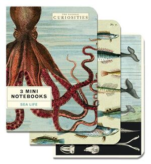 3 MINI NOTEBOOKS SEA LIFE