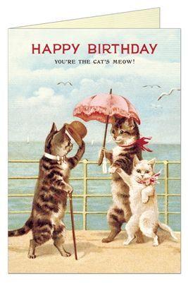 POSTAL HAPPY BIRTHDAY CAT'S MEOW