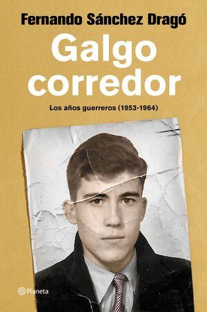 GALGO CORREDOR