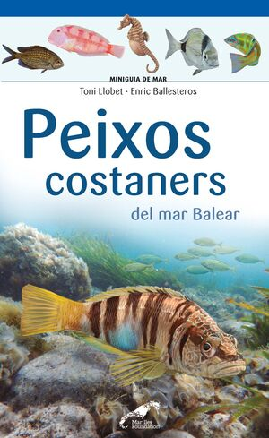 PEIXOS COSTANERS DEL MAR BALEAR