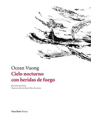CIELO NOCTURNO CON HERIDAS DE FUEGO